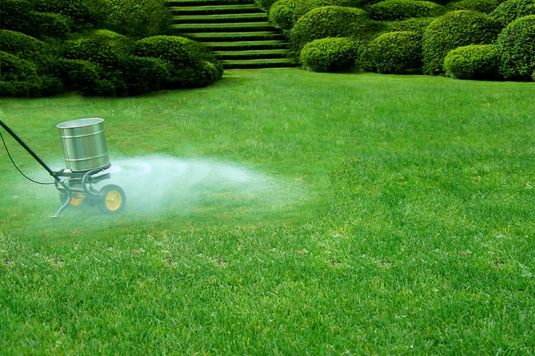 Lawn Fertilization Auburn AL